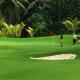 ML06:モーレアゴルフツアー モーレア・グリーンパールゴルフ・コース