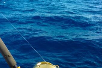 BM11:プライベート ラグーン・フィッシング(内海での魚釣り)