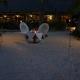DM04 《マナヴァビーチリゾートモーレア》ビーチでのROYALプライベートディナー