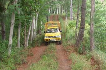 ML02:4WDサファリツアー