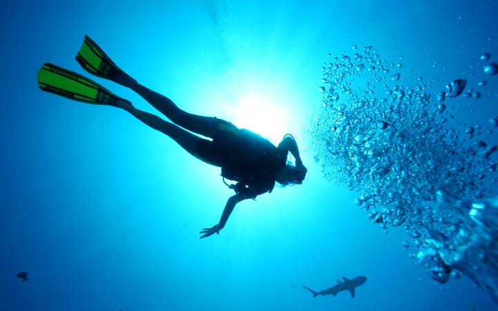 タヒチでのダイビング事情