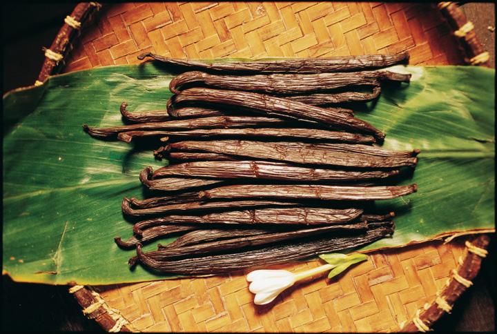 タヒチアンバニラ
