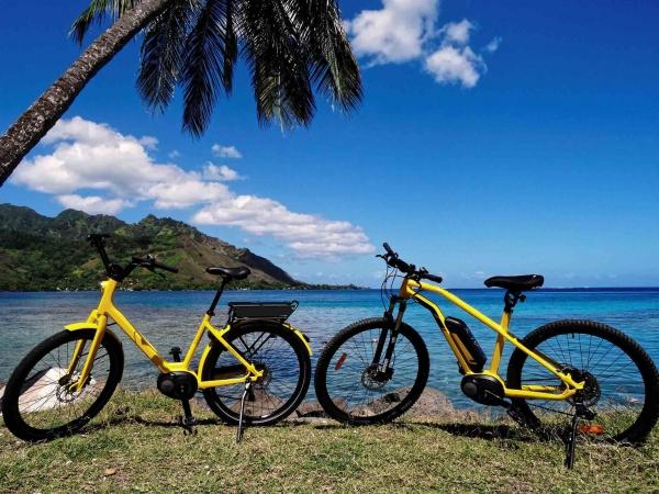 電動自転車 レンタル