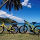 ML11:電動自転車 レンタル